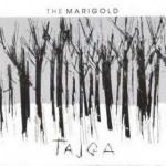 tajga-medium
