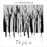 tajga-small